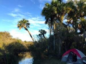 06 Myakka River_Photo Credit Heather Shane_web