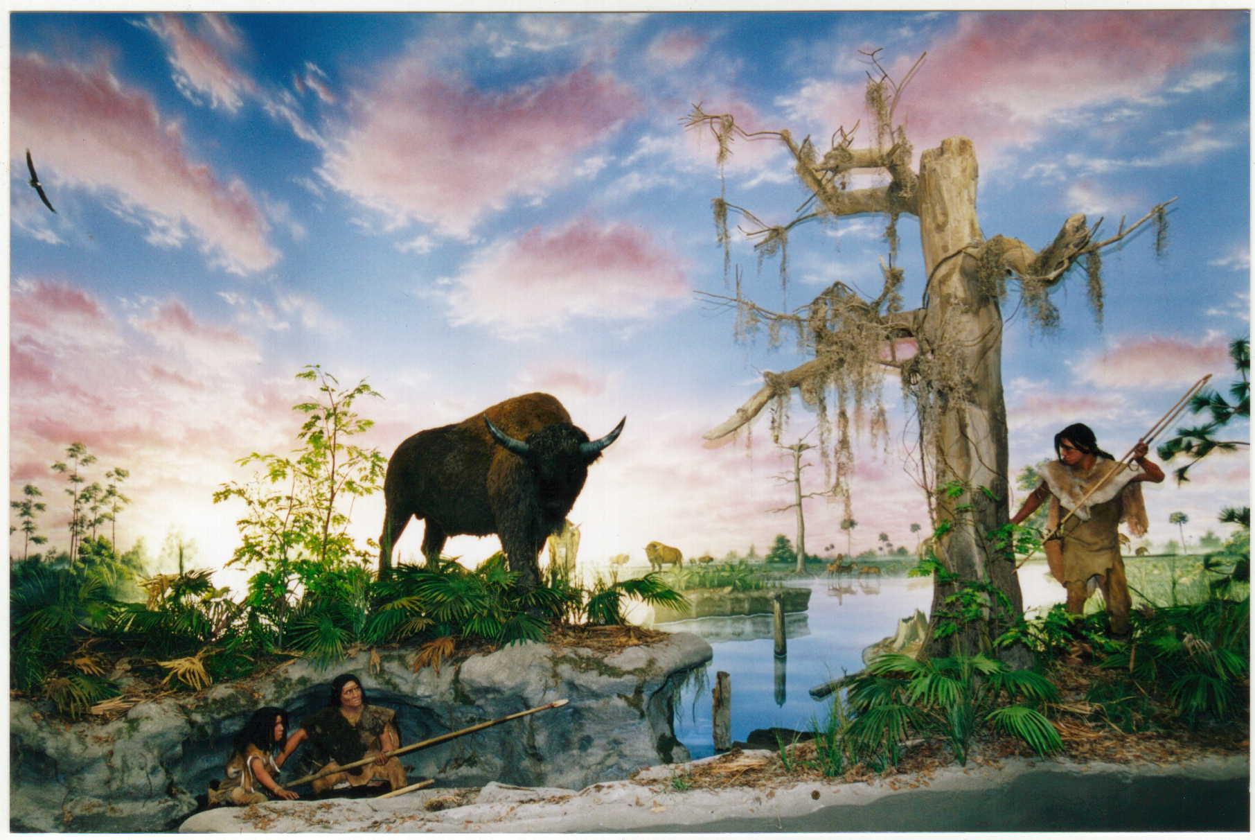 Photo Credit South Florida Museum