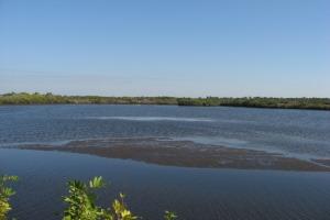 Lower Myakka River at Tarpon Point