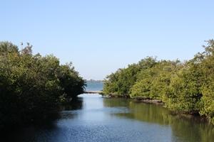 Blackburn Bay