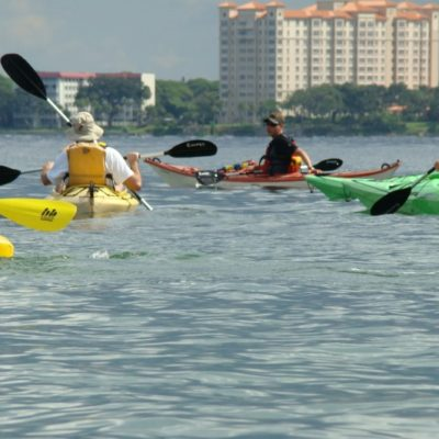 kayaking in Sarasota Bay to Selby Gardens