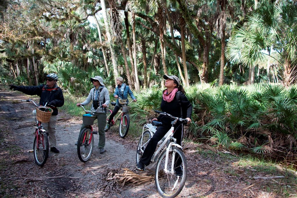 Biking in Myakka River State Park