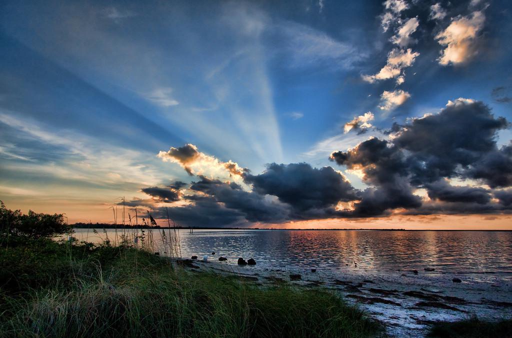 Inspired Sarasota Bay